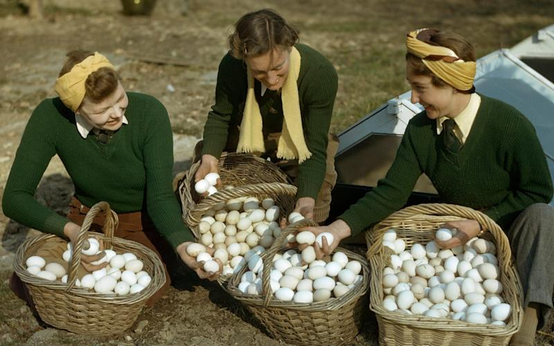 Three Land Girls, members of the Women's Land Army, examining baskets of fresh eggs in Surrey in March 1944 - Popperfoto