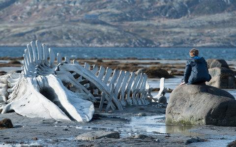 Mr Zvyagintsev's 2014 film Leviathan was nominated for an Oscar but criticised by the Russian culture ministry - Credit: Handout