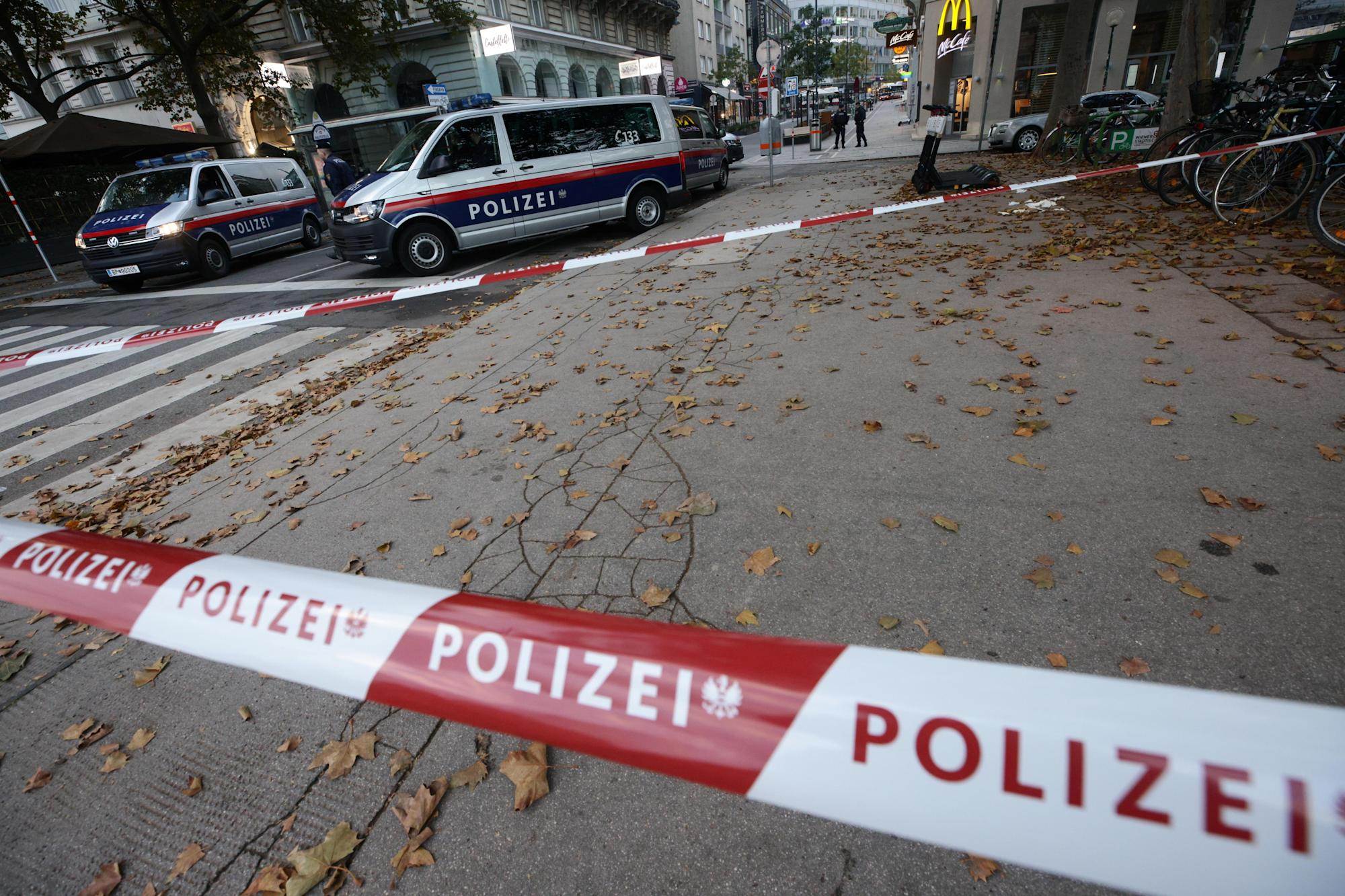 Massive manhunt after Vienna terror attack leaves several dead