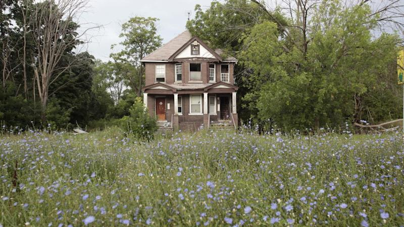 A vacant blighted home sits with overgrown weeds and bushes on West Grand Boulevard, in Detroit