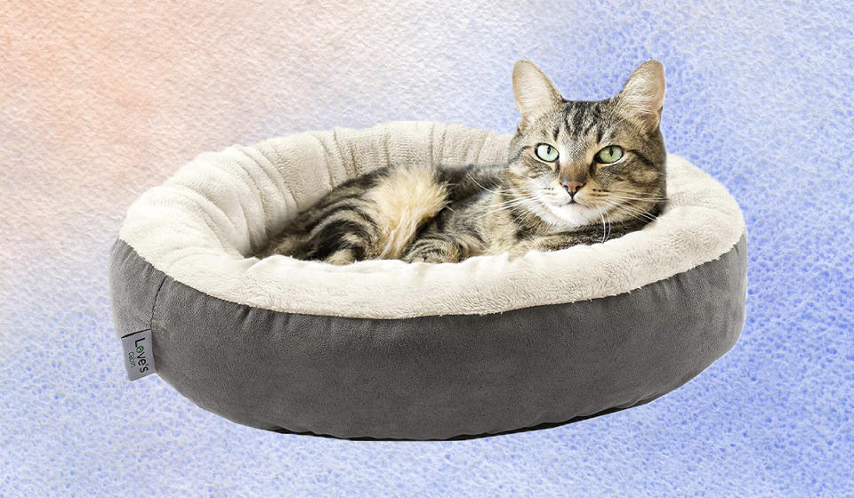 We know It's probably not as luxurious as that empty cardboard box you tossed on the floor, but your kitty might like this too. (Photo: Amazon)