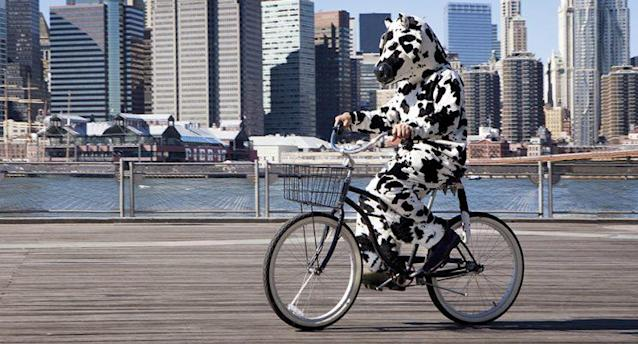 People are dressing up as cows for free Chik-fil-A. (Photo: Getty Images)