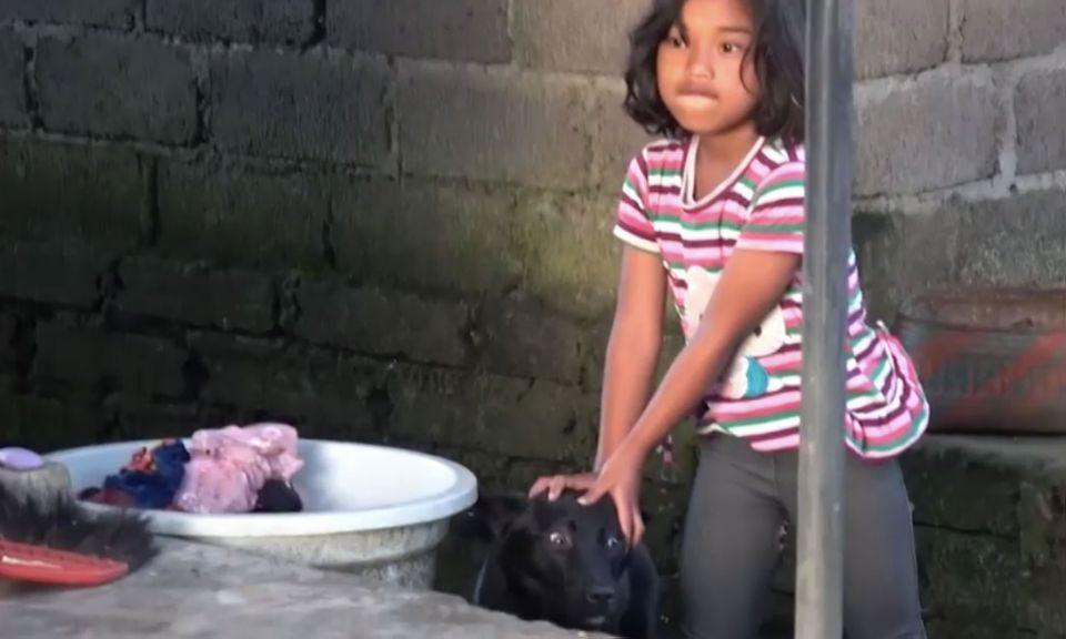 A little girl holds a terrified dog before the animal is taken away to be slaughtered. Source: Animals Australia