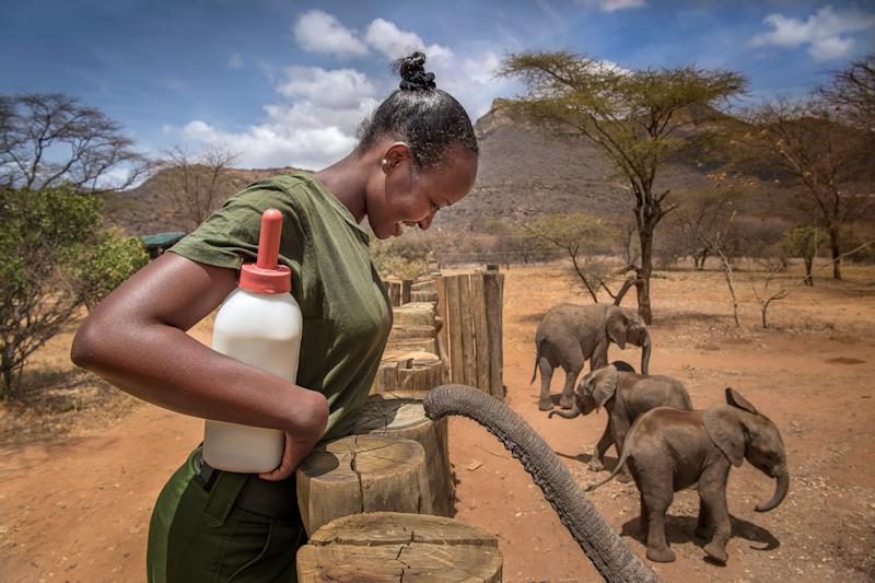 Meet the Badass Woman Who Has Rescued 30 Elephants