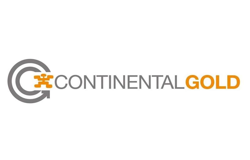 Chinese firm buying Continental Gold