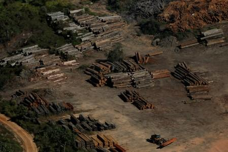 "FILE PHOTO: Piles of wood are seen during ""Operation Green Wave"" conducted by agents of the Brazilian Institute for the Environment and Renewable Natural Resources, or Ibama, to combat illegal logging in Apui"