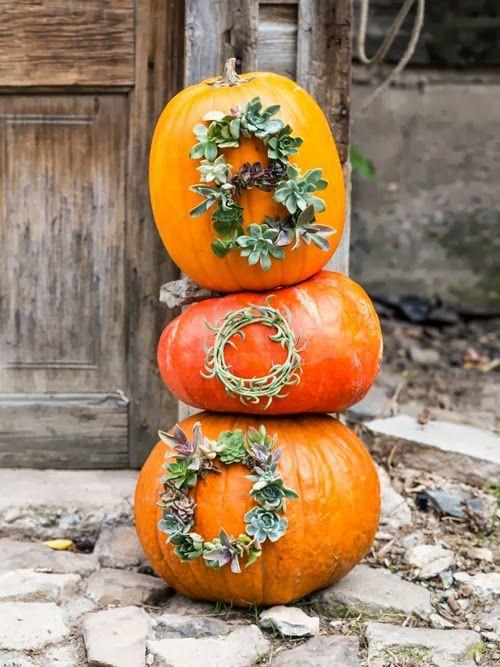 """<p>Who needs paint when you can create an eye-catching outdoor pumpkin decoration with succulents?</p><p><strong>See more at <a href=""""https://thehousethatlarsbuilt.com/2013/10/succulent-worded-pumpkins.html/"""" rel=""""nofollow noopener"""" target=""""_blank"""" data-ylk=""""slk:The House That Lars Built"""" class=""""link rapid-noclick-resp"""">The House That Lars Built</a>. </strong></p><p><a class=""""link rapid-noclick-resp"""" href=""""https://www.amazon.com/Artificial-Succulent-Plants-Succulents-Realistic/dp/B08NJWG5MV?tag=syn-yahoo-20&ascsubtag=%5Bartid%7C2164.g.36877187%5Bsrc%7Cyahoo-us"""" rel=""""nofollow noopener"""" target=""""_blank"""" data-ylk=""""slk:SHOP FAUX SUCCULENTS"""">SHOP FAUX SUCCULENTS</a></p>"""