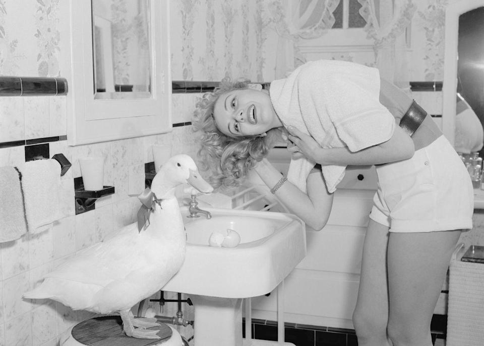 """<p>Actress Kathleen Hughes caused a stir when she revealed that her secret to shiny waves was <a href=""""http://www.glamourgirlsofthesilverscreen.com/show/136/Kathleen+Hughes/index.html"""" rel=""""nofollow noopener"""" target=""""_blank"""" data-ylk=""""slk:washing with duck egg shampoo"""" class=""""link rapid-noclick-resp"""">washing with duck egg shampoo</a>. The eggs she used for the shampoo were laid daily by her pet duck. </p>"""