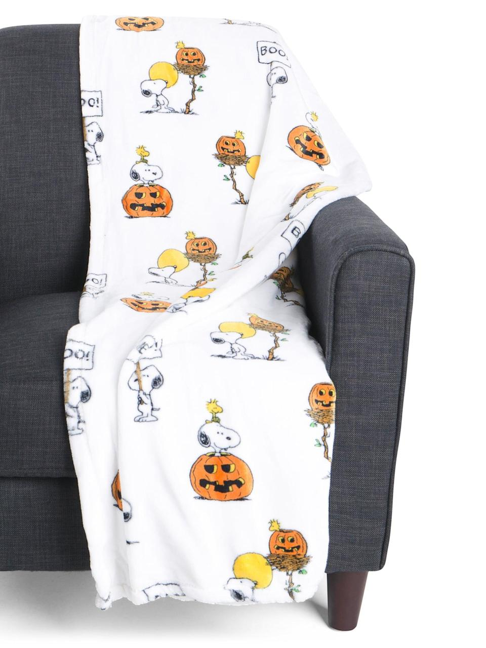 <p>The <span>Woodstock And Pumpkins Throw Blanket</span> ($17) features Snoopy and Woodstock from <strong>Peanuts</strong>.</p>