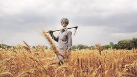 MP govt needs Rs 16K crore to waive farm loan