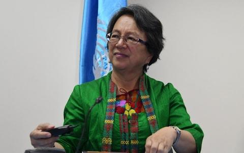 The UN Special Rapporteur on the rights of indigenous peoples Victoria Tauli-Corpuz claims her life is under threat - Credit: ORLANDO SIERRA/AFP