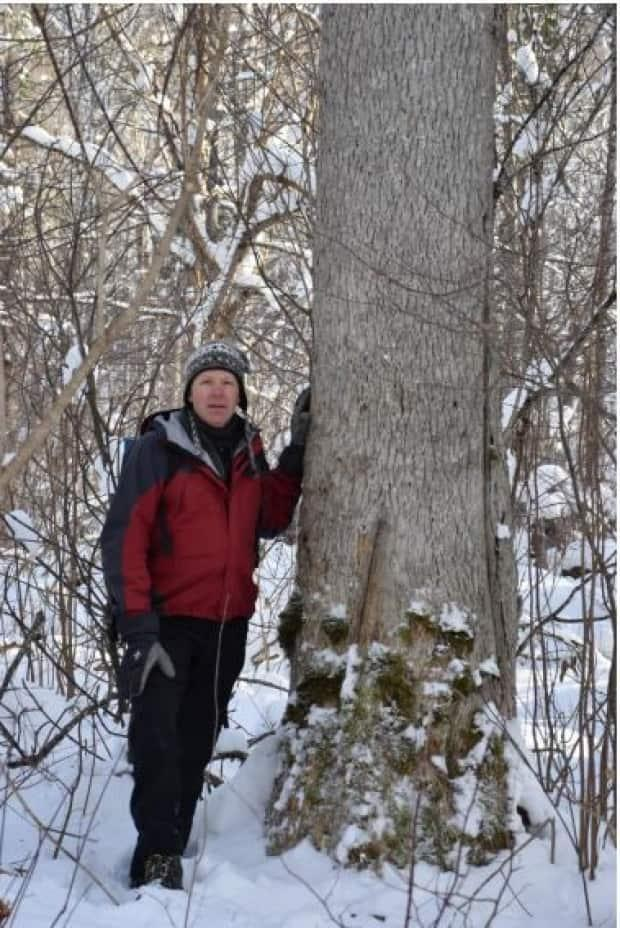 Karl Branch stands next to the large black ash tree found near Portage Lakes