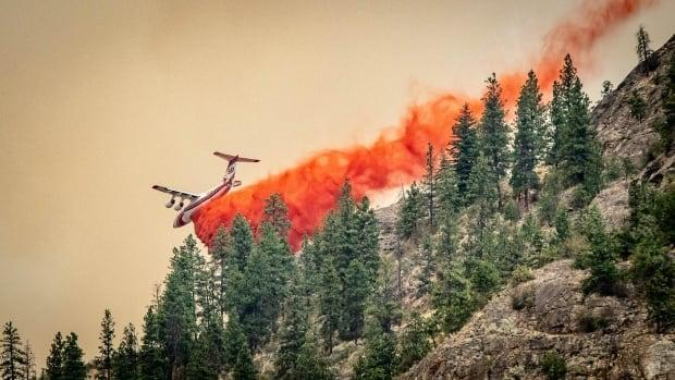 An aircraft drops fire retardant near the Nk'Mip fire on July 19. As resources on the frontlines became strained, the federal government announced its plans to send soldiers into B.C. earlier this week. (Submitted by Mike Fitzpatrick - image credit)