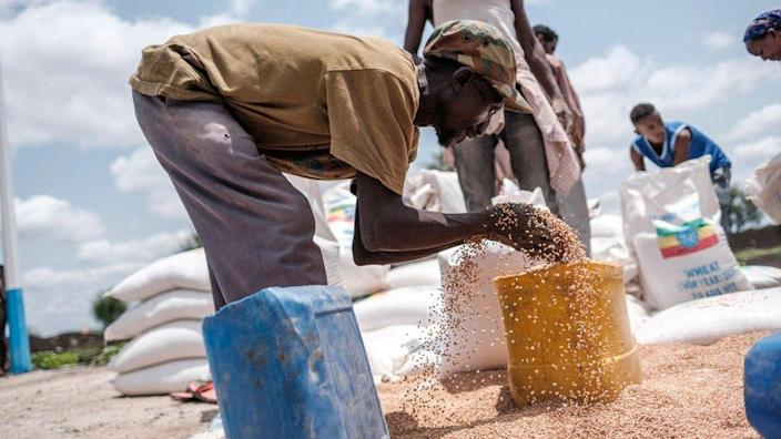 A man puts wheat into a container during a food distribution organized by the Amhara government near the village of Baker, 50 km south east of Humera, in the northern Tigray Region on July 11, 2021.
