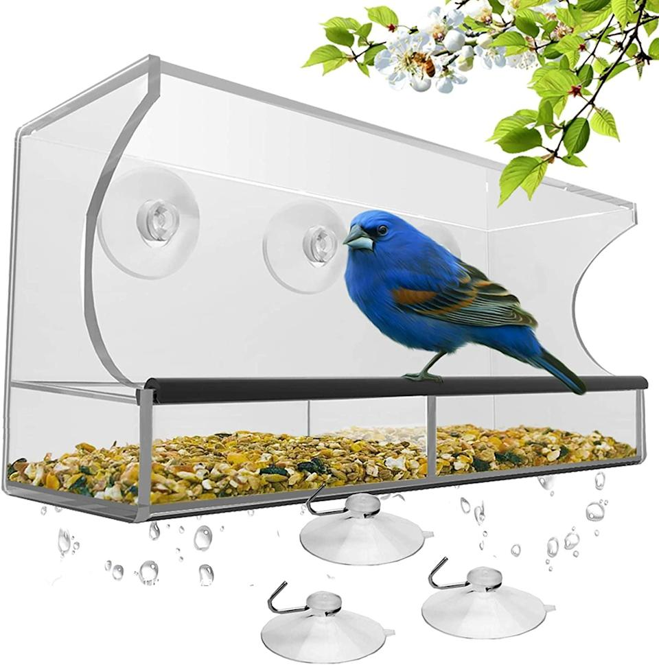 <p>The <span>Window Bird Feeder with Strong Suction Cups and Seed Tray</span> ($28) is a great way to get to know the birds in your neighborhood.</p>