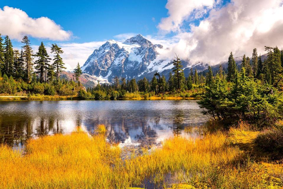 """<p><strong>Where to go:</strong> Evergreens dominate North Cascades National Park, but two species of conifers here actually drop their leaves. The golden needles of the larch trees – plus changing deciduous species and shrubs — characterize autumn in this refuge three hours from Seattle. </p><p><strong>When to go:</strong> Mid-October </p><p><a class=""""link rapid-noclick-resp"""" href=""""https://go.redirectingat.com?id=74968X1596630&url=https%3A%2F%2Fwww.tripadvisor.com%2FHotels-g143046-North_Cascades_National_Park_Washington-Hotels.html&sref=https%3A%2F%2Fwww.redbookmag.com%2Flife%2Fg34045856%2Ffall-colors%2F"""" rel=""""nofollow noopener"""" target=""""_blank"""" data-ylk=""""slk:FIND A HOTEL"""">FIND A HOTEL</a></p>"""