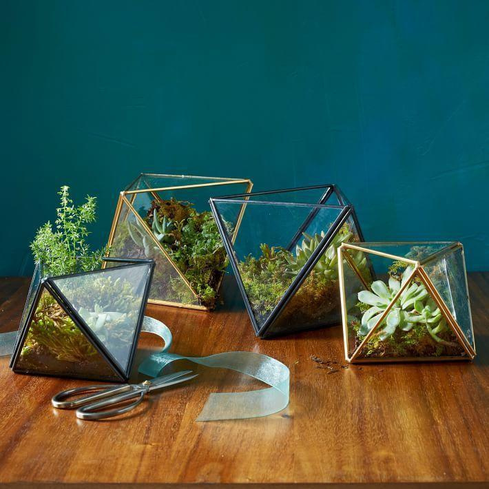 """<p><strong>terrariums</strong></p><p>westelm.com</p><p><strong>$30.27</strong></p><p><a href=""""https://go.redirectingat.com?id=74968X1596630&url=https%3A%2F%2Fwww.westelm.com%2Fproducts%2Ffaceted-terrariums-d2032&sref=https%3A%2F%2Fwww.housebeautiful.com%2Fshopping%2Fg1969%2Fholiday-gifts-for-women%2F"""" rel=""""nofollow noopener"""" target=""""_blank"""" data-ylk=""""slk:BUY NOW"""" class=""""link rapid-noclick-resp"""">BUY NOW</a></p><p>Green thumb or not, anyone can grow an air plant or succulent. Get her indoor garden started with one of these geometric planters.</p>"""