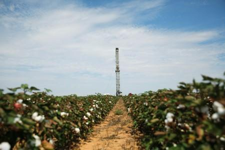 A pulling rig is erected at an oil well in the middle of a cotton field to swab the well in Seminole