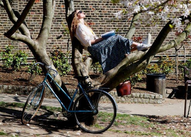 21-year-old Amalia Maiden relaxes in a tree in Holland Park