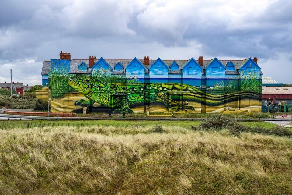 Work is completed on artist Paul Curtis' sand lizards mural which covers the exterior of Toad Hall in Ainsdale, Merseyside (Peter Byrne/PA) (PA Wire)