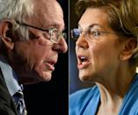 US senators Bernie Sanders and Elizabeth Warren have both called out Wall Street's business model