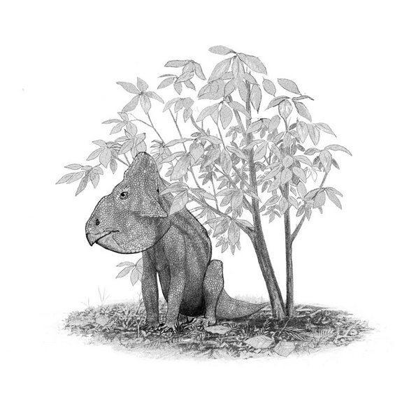 A <em>Leptoceratops gracilis</em> sits under a Magnolia tree; The Magnolia was amongst the first flowering plants to evolve, some 95 million years ago.