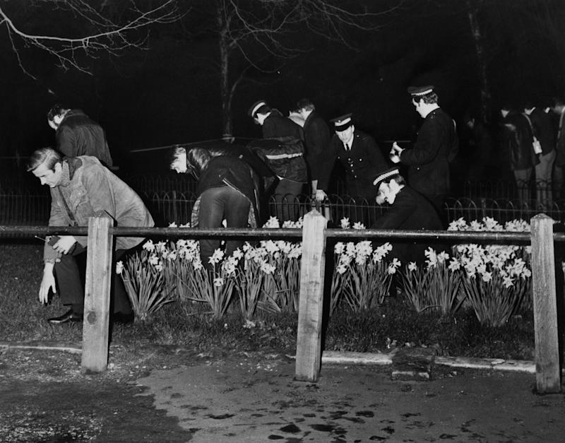A photo of police searching for evidence in flower beds by the Mall, following an attempt, earlier that evening, to kidnap Princess Anne, London, 20th March 1974.
