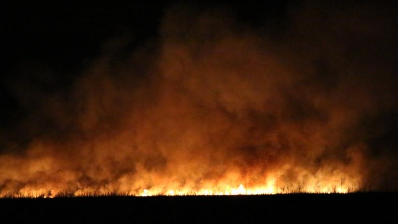 Parks Canada may never know cause of Point Pelee fire