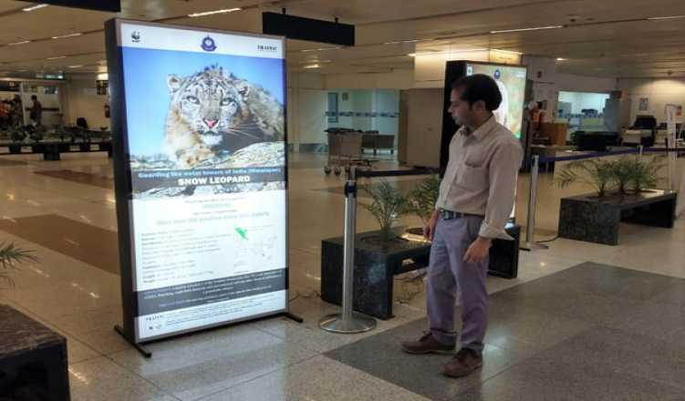 Delhi airport gets 5 display boards to warn travellers of illegal wildlife trade, poaching