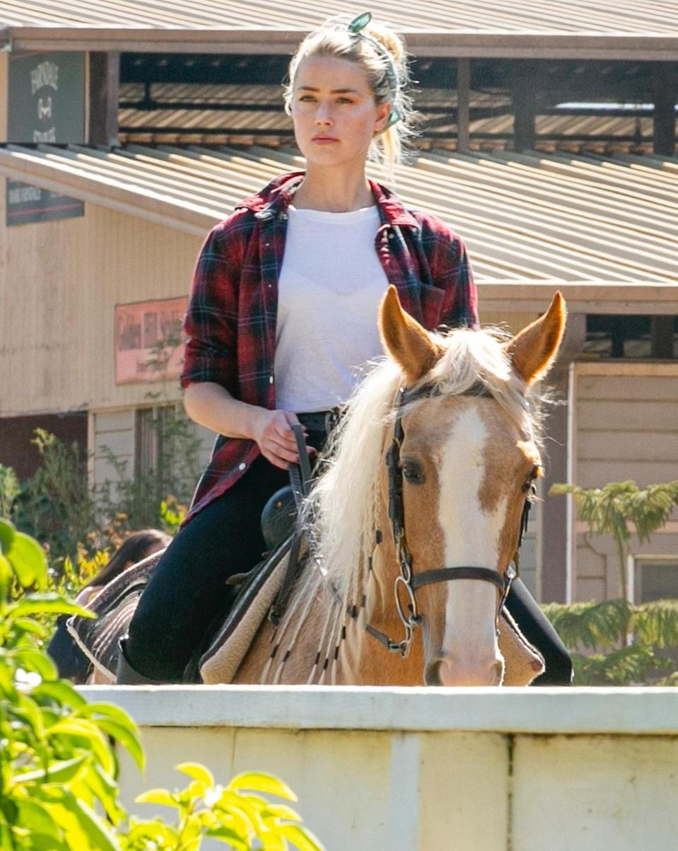<p>Amber Heard takes her horse for a ride around the stables on Tuesday in L.A. </p>