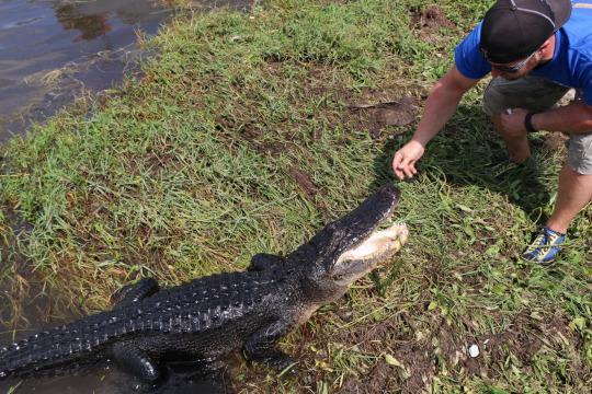 WATCH: The Hunt for the Louisiana Swamp Monsters [Video]