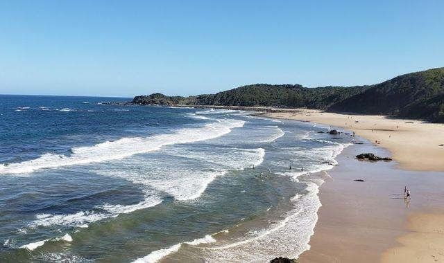 Woman mauled in suspected shark attack off NSW coast