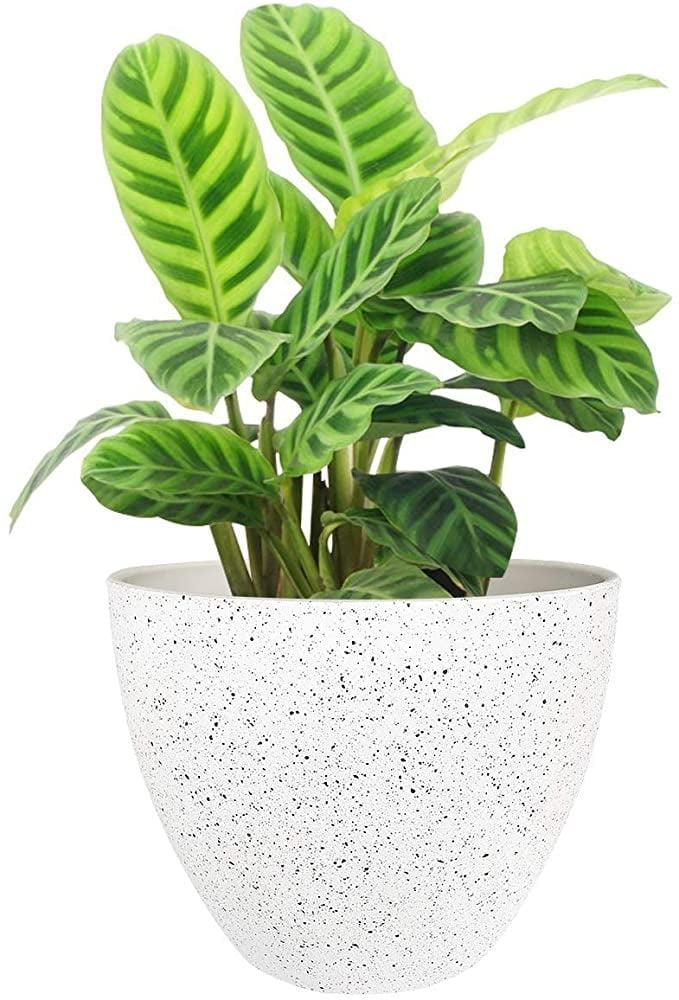 "<p>This versatile <a href=""https://www.popsugar.com/buy/Flower-Pot-Planter-581167?p_name=Flower%20Pot%20Planter&retailer=amazon.com&pid=581167&price=16&evar1=casa%3Aus&evar9=45784601&evar98=https%3A%2F%2Fwww.popsugar.com%2Fhome%2Fphoto-gallery%2F45784601%2Fimage%2F47575657%2FFlower-Pots-Outdoor-Indoor-Garden-Planter&list1=shopping%2Cproducts%20under%20%2450%2Cdecor%20inspiration%2Caffordable%20shopping%2Chome%20shopping&prop13=api&pdata=1"" class=""link rapid-noclick-resp"" rel=""nofollow noopener"" target=""_blank"" data-ylk=""slk:Flower Pot Planter"">Flower Pot Planter</a> ($16, originally $20) works both indoors and outdoors.</p>"