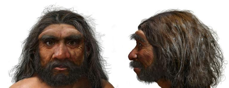 """A handout photo obtained from EurekAlert! shows an illustration of a portrait of Homo longi, or """"Dragon Man"""" -- which scientists say could be the closest ancestor of humans"""