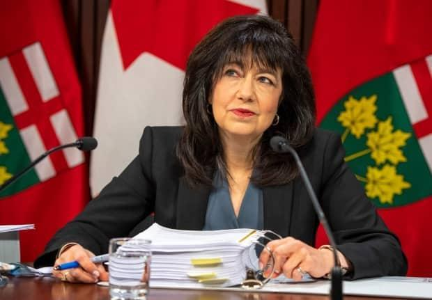Bonnie Lysyk, Auditor General of Ontario, said at a press conference Wednesday that there are