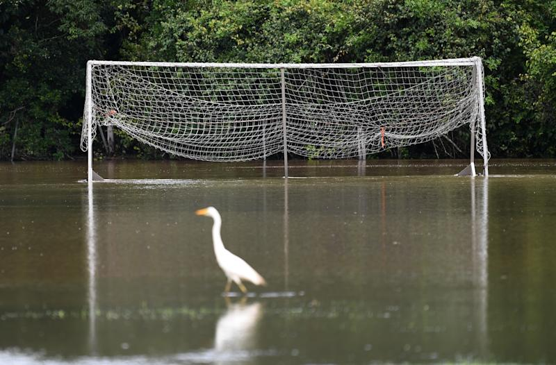 A football field is covered in floodwater in Woombye on the Sunshine Coast.