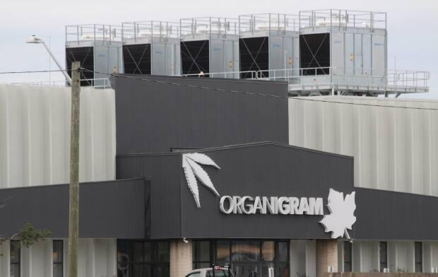 Lawsuits have been filed against Organigram after its Moncton cannabis production facility was the source of a legionnaires' disease outbreak in 2019.  (Shane Magee/CBC - image credit)