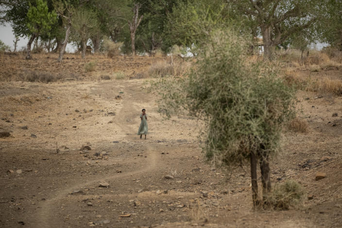 A girl walks along a path off the main road near Danshe, a town in an area of western Tigray annexed by the Amhara region during the ongoing conflict, in Ethiopia Saturday, May 1, 2021. Ethiopia faces a growing crisis of ethnic nationalism that some fear could tear Africa's second most populous country apart, six months after the government launched a military operation in the Tigray region to capture its fugitive leaders. (AP Photo/Ben Curtis)