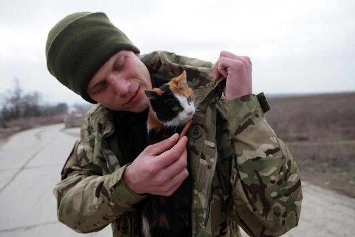 A Ukrainian serviceman holds a cat as he guards a checkpoint near the port city of Mariupol, which remains Kiev's main stronghold in the conflict zone in Donetsk region (AFP Photo/Aleksey Filippov)