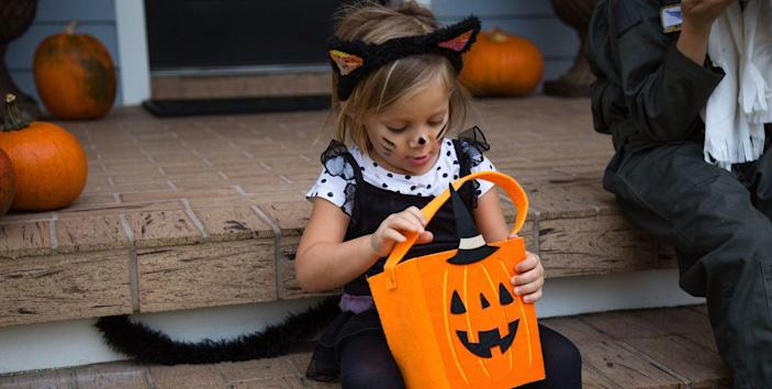 Making Your Own Cat Halloween Costume