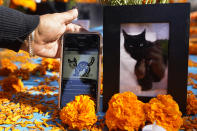"Artist Rosanna Esparza Ahrens shows digital artwork by fellow artist Gary Baseman, next to a picture of his late Blackie the Cat Baseman set at an altar for Day of the Dead, titled ""2020 Memorial to Our Resilience,"" at Grand Park in Los Angeles, on Thursday, Oct. 29, 2020. Day of the Dead, or Dia de los Muertos, the annual Mexican tradition of reminiscing about departed loved ones with colorful altars, or ofrendas, is typically celebrated Sunday through Monday. (AP Photo/Damian Dovarganes)"