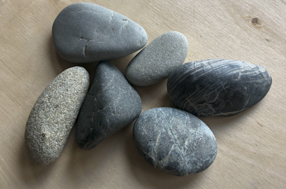 Rachel Carbary's group of six rocks on wood. She collects them to remember the dolphins slaughtered in the annual dolphin hunt in Japan.