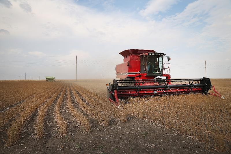 So far Beijing has targeted major American exports to China such as soybeans, which brought in $14 billion in sales last year (AFP Photo/SCOTT OLSON)