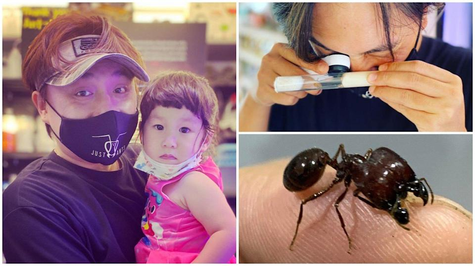 John Ye, the owner of Just Ants, a shop in Yishun for all your ant-keeping needs, has learnt about perseverance, teamwork and even the importance of NS from these amazing creatures.