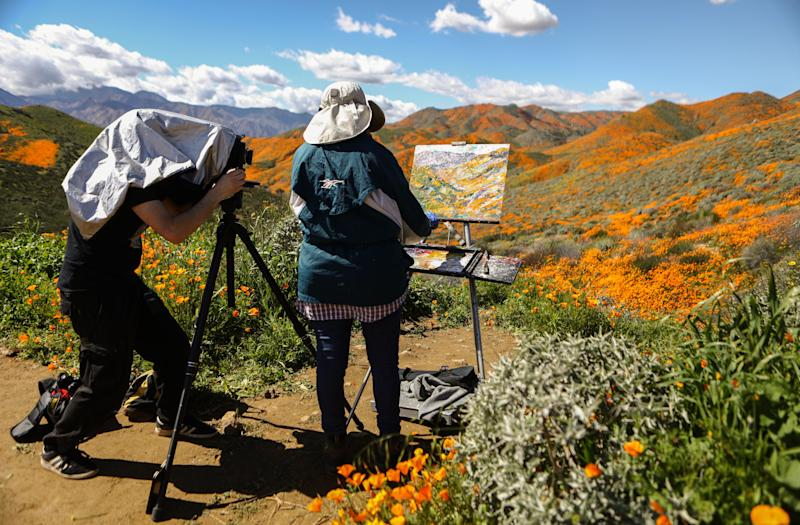 A man photographs a woman painting a super bloom of wild poppies blanketing the hills of Walker Canyon near Lake Elsinore, California.