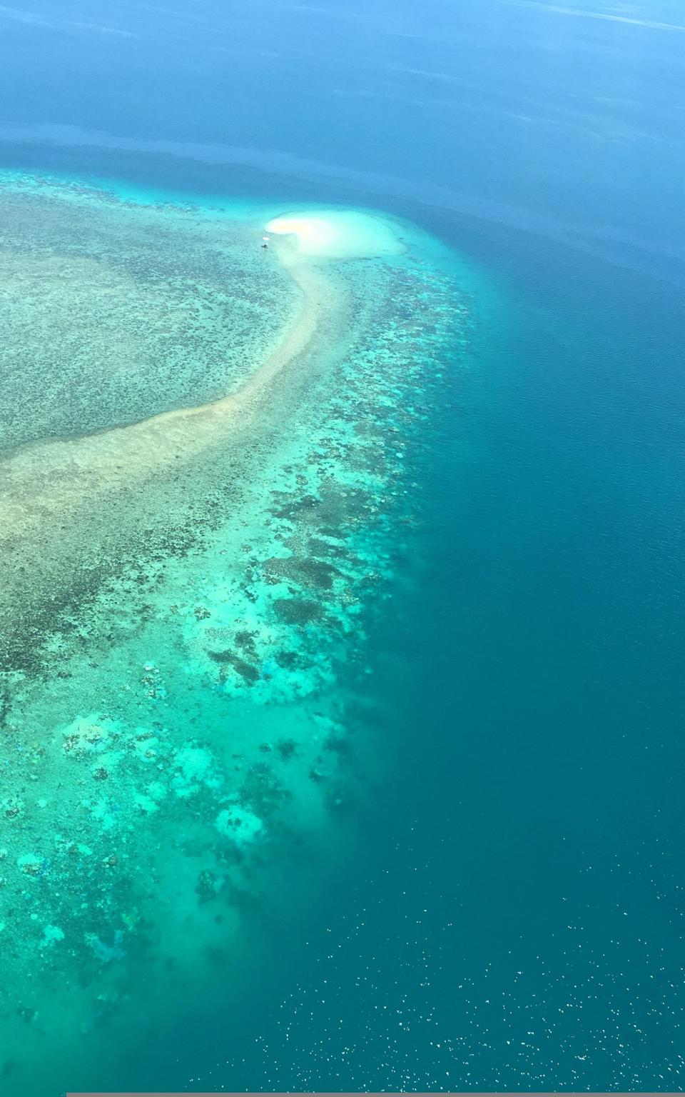 How coral of Great Barrier Reef could be saved by big, bright clouds