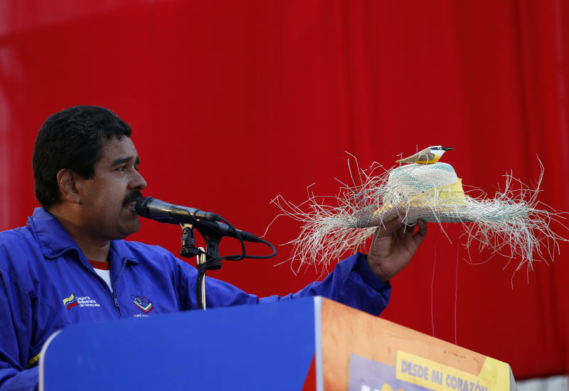 "Venezuela's acting President Nicolas Maduro holds a farm worker's hat with the figure of a bird perched on the hat's crown during a presidential election campaign rally in Catia La Mar, Venezuela, Tuesday, April 9, 2013. Maduro assured last week during a campaign rally that Venezuela's late President Hugo Chavez appeared to him as a ""very small bird"" to give him his blessing. Maduro, Chavez's hand-picked successor, is running for president against opposition candidate Henrique Capriles in the presidential election set for Sunday, April 14. (AP Photo/Ariana Cubillos)"