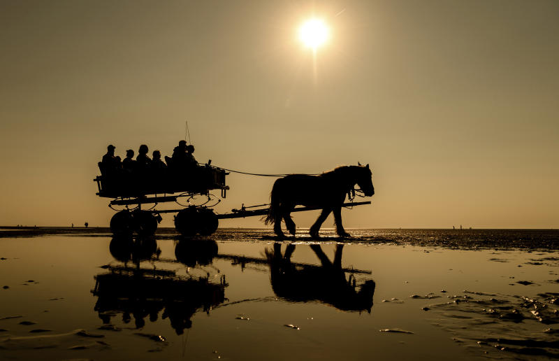 People enjoy the ride in a horse-drawn carriage through the Wadden sea near Cuxhaven, Germany, Wednesday, April 24, 2019. (Mohssen Assanimoghaddam/dpa via AP)