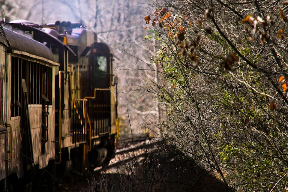 Explore western North Carolina on the Great Smoky Mountains Railroad.