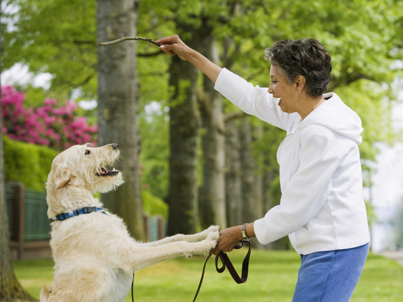 woman playing fetch with dog